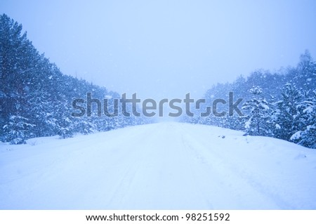 heavy snowfall in the way - stock photo