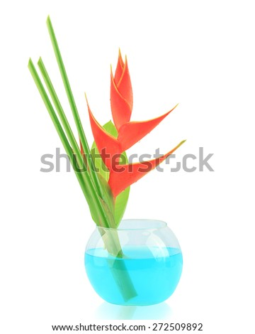 Heliconia flower in glass  isolated on white background. This has clipping path. - stock photo