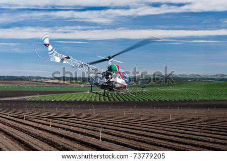 Helicopter spraying pest control chemicals on crops raised conventionally. - stock photo