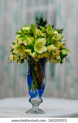 Helleborus odorus bouquet in vase - stock photo