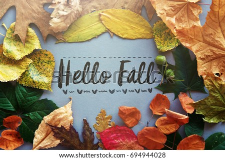 Delightful Hello Fall Card, Autumn Composition From Leaf. Vintage Forest Filter