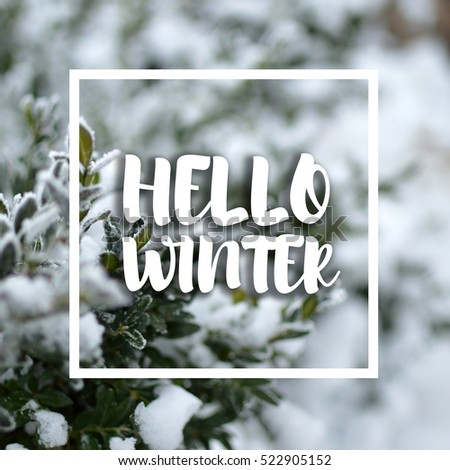Great Hello Winter Text With Blurred Background. Christmas And New Year Greeting. Pictures Gallery