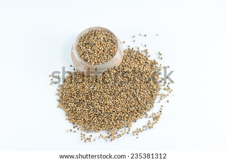 Hemp seeds held by woman hands, shaping a heart - stock photo
