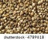 Hempseed - stock photo