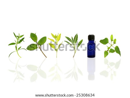 Herb leaf sprigs of hyssop, chocolate mint, golden marjoram, sage, and bergamot and an essential oil bottle, over white background. - stock photo