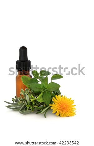 Herb leaf sprigs of thyme, rosemary, lavender, sage and dandelion flower with aromatherapy essential oil glass dropper bottle, over white background. - stock photo