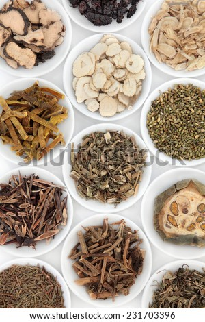 Herb selection used in chinese herbal medicine in porcelain bowls over white background. - stock photo