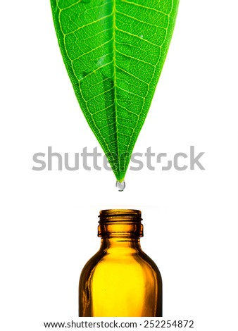 Herbal, alternative medicine, water drop falling down from a leaf to the bottle isolated on white  - stock photo