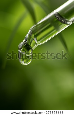 Herbal Essence ,shot with very shallow depth of field. - stock photo