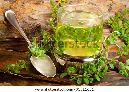 herbal healing tea from Brahmi on a wooden background - stock photo