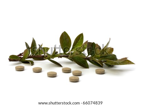 herbal medicine isolated on white background - stock photo