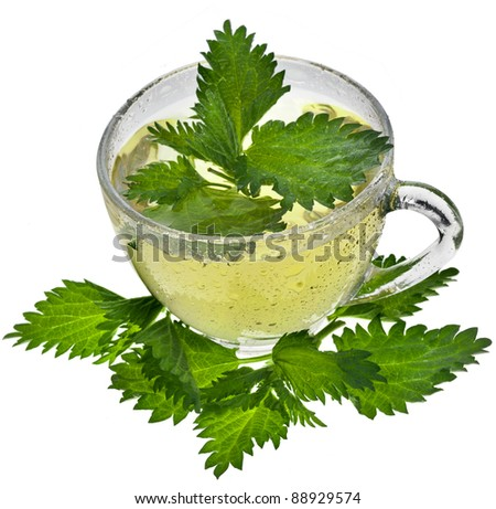Herbal nettle tea  close up isolated on white background
