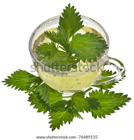 Herbal  nettle  tea  on white background - stock photo