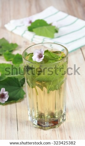 Herbal tea from marshmallow, lat. Althaea officinalis, good against  cough - stock photo