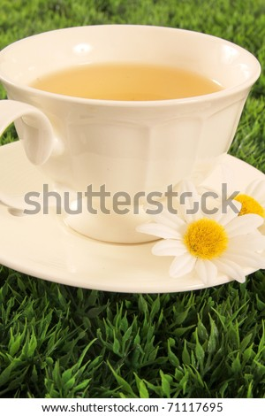 Herbal tea in a ivory cup with daisy flower