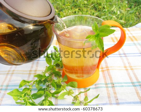 herbal tea with fresh mint picnic outdoors