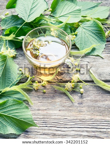 Herbal tee with linden - stock photo