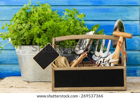 Herbs and garden tools - stock photo