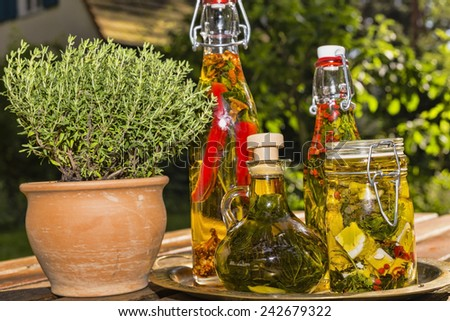 herbs and sheep cheese in oil with a flower pot with rosemary - stock photo