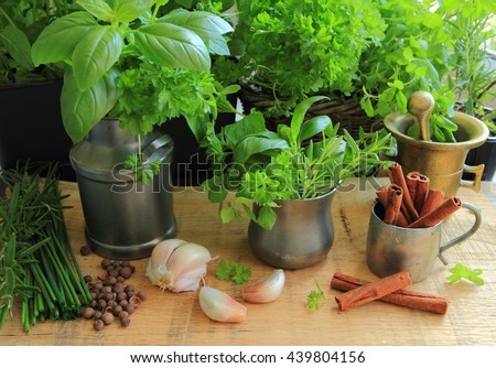 Herbs and spices. Fresh and aromatic ingredients for cooking - stock photo