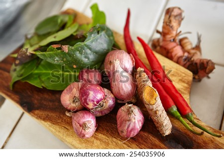 Herbs and spices used for cooking ingredient - stock photo