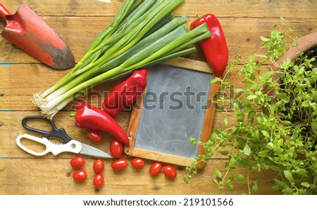 herbs, food ingredients, slate for recipes, cooking or gardening concept - stock photo