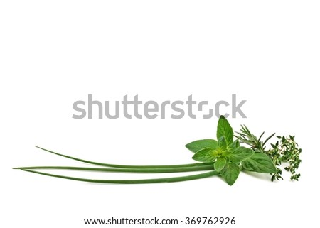 Herbs. Fresh spices and herbs isolated on white background. Green herbs.  - stock photo