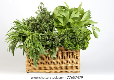 herbs in basket - stock photo