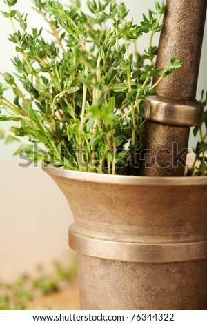 herbs in mortar - stock photo