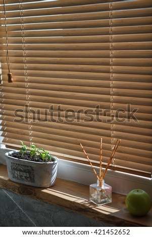 Herbs in plant pot growing on a windowsill - stock photo