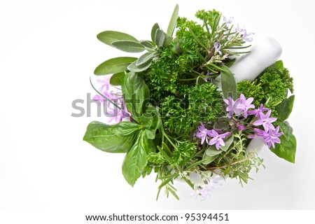 Herbs isolated on white with a pestle and mortar - stock photo