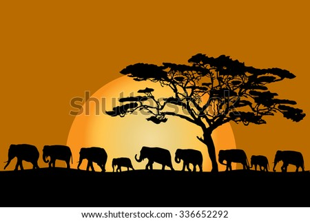 african sunset silhouettes kbk