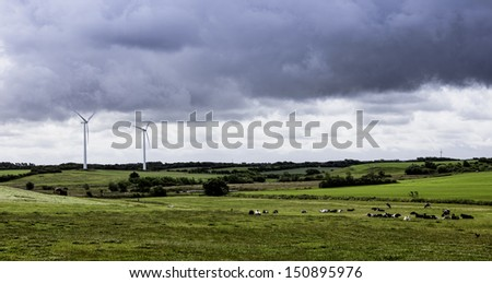 Herd of cows resting in a meadow with wind turbines - stock photo
