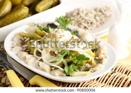 herring salad with onion and cucumber - stock photo