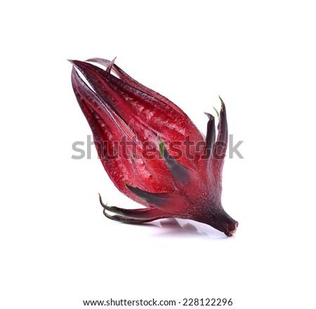 Hibiscus sabdariffa or roselle fruits on white background - stock photo