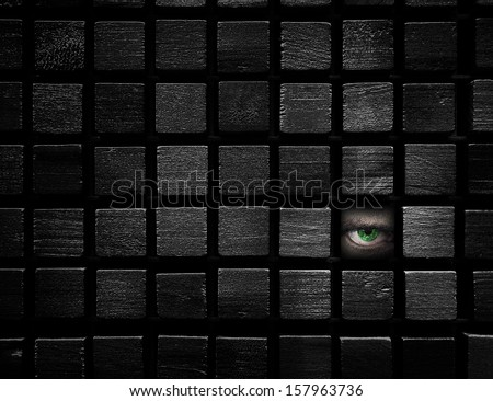 Hidden spy is watching - stock photo
