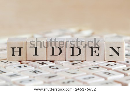 hidden word on wood blocks - stock photo