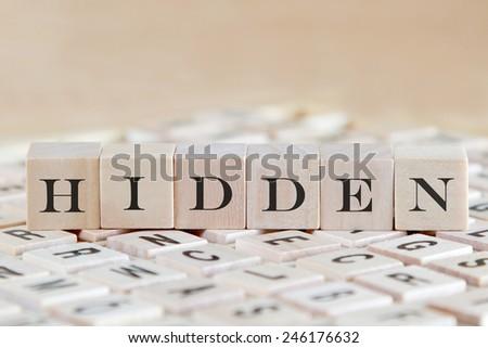 hidden word on wood blocks - stock photo
