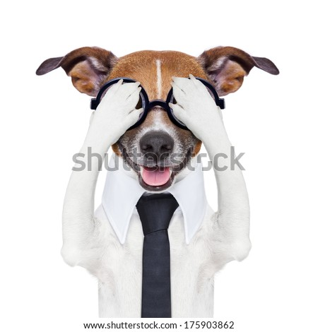 hiding covering crazy dog with tie and dumb glasses - stock photo
