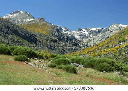 high altitude pastures in Sierra de Gredos - stock photo