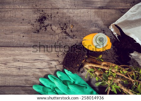 High angle shot of a group of items for potting and planting seeds. Wooden table - stock photo