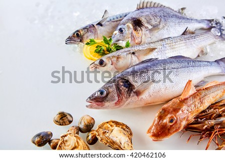 High Angle Still Life View of Fresh Raw Fish, Shellfish and Seafood Arranged in Attractive Display on White Background with Lemon - stock photo