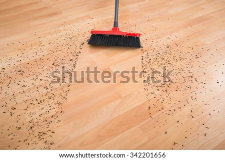 Messy House Stock Images Royalty Free Images Amp Vectors