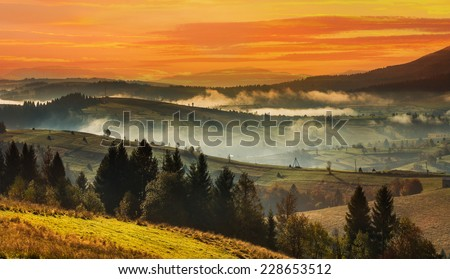 High Carpathian mountains with coniferous forest and meadow at sunset in autumn. - stock photo