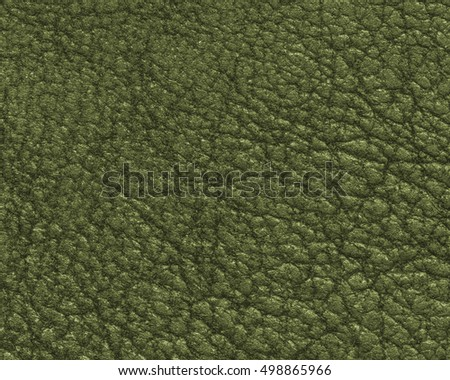 high detailed of green leather texture. Useful for background