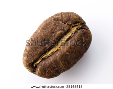 high magnification coffee bean isolated on white