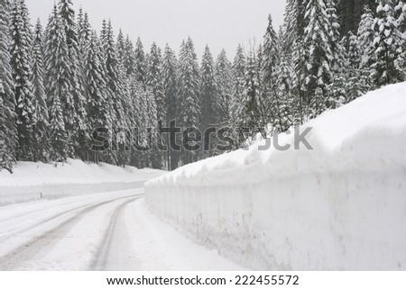 High mountain road through spruce forrest during a snowstorm, frozen with meters of snow. Visible snowflakes falling. - stock photo