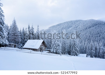 High on the mountains in the forest covered with snow there is lonely old wooden hut standing with fence on the lawn.
