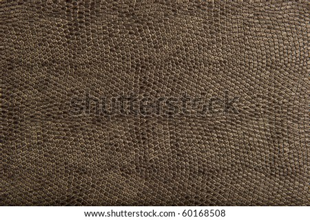 High Quality Animal Reptile Skin Patten and Texture - stock photo