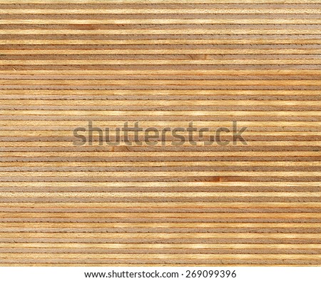 high resolution birch wood section texture - stock photo